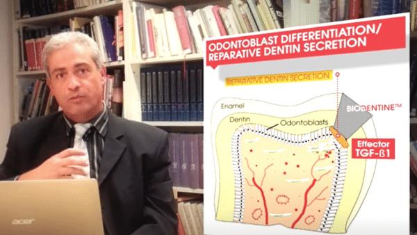 "Septodont webinar ""Biodentine Bioactivity"" – Prof. Imad About"
